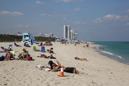 Haulover Beach Florida Hotels The Best Beaches In World