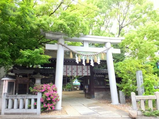讃く, お隣には福島天満宮:緑が綺麗に映えます