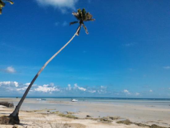 pantai biduk biduk berau indonesia review tripadvisor rh tripadvisor co id