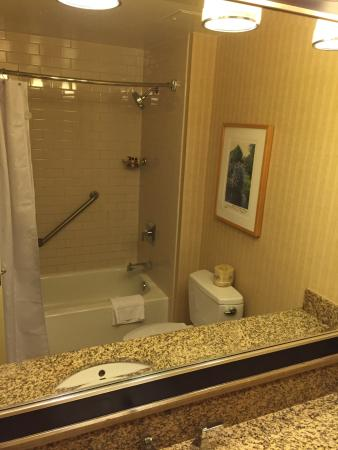 Sheraton Seattle Hotel: Bathroom the size of your toilet