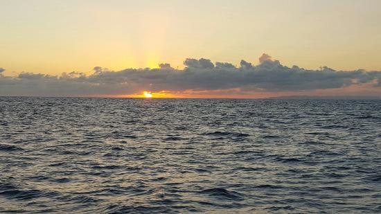 Eleele, Гавайи: 20160213_183202_large.jpg