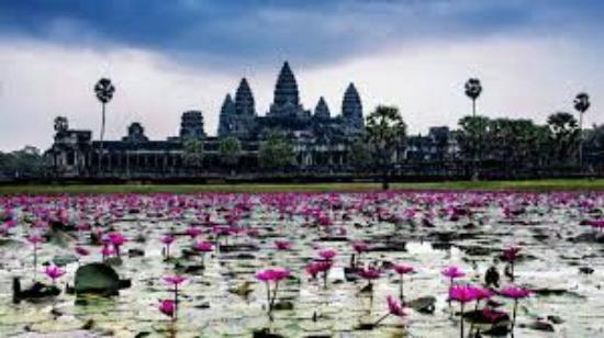 Angkor Tuk Tuk Tour