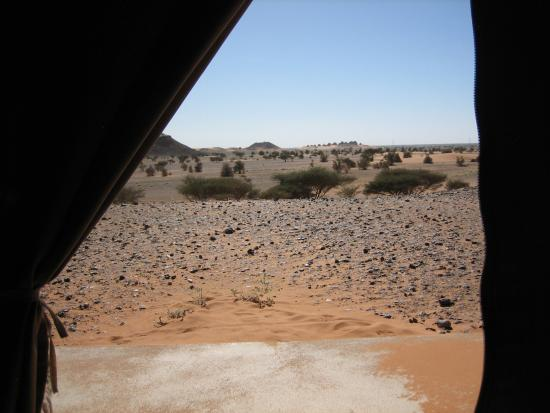 Meroe Tented Camp: The Meroe pyramids are in the distance.