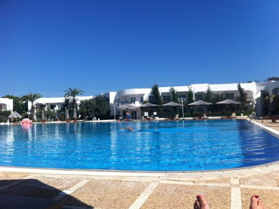 Piscine  Photo De El Mouradi Gammarth Gammarth  Tripadvisor