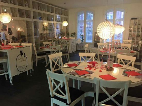 micky und molly veganes cafe katzenmuseum braunschweig restaurant bewertungen. Black Bedroom Furniture Sets. Home Design Ideas