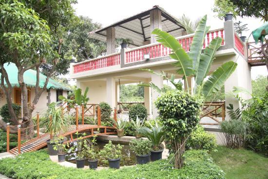 Saavaj resort sasan gir india review hotel for Terrace 6 indore address