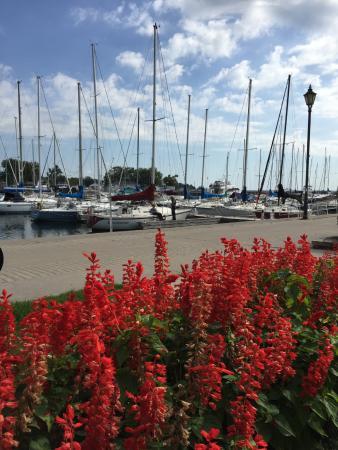 โคเบิร์ก, แคนาดา: Cobourg Marina