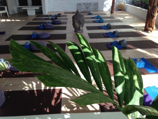 Meg DeClerck Yoga: garden yoga space at Red Buddha Yoga & Wellness