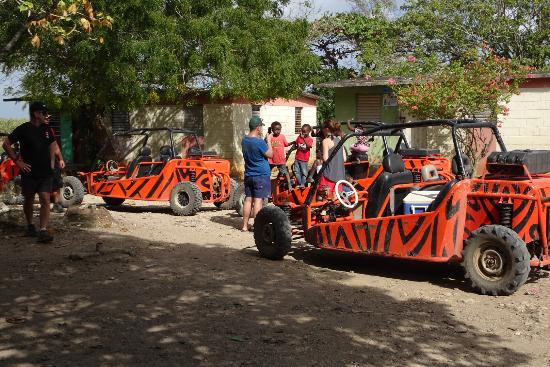 Bayahibe, Dominik Cumhuriyeti: La sortie buggys