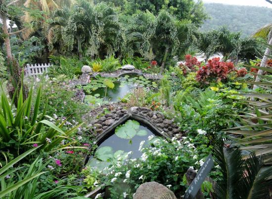 Charmant Palm Tree Gardens Botanical Garden: Palm Tree Gardens