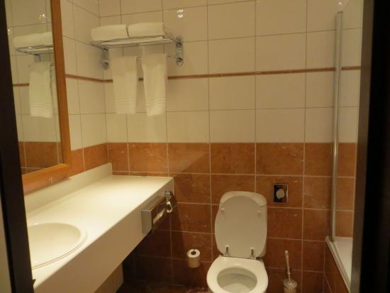 De wat gedateerde badkamer - Picture of Bilderberg Grand Hotel ...