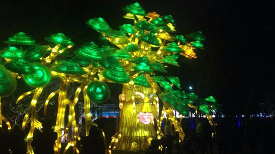 a glowing garden effect review of dubai garden glow dubai united
