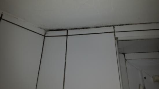 Moisissures Dans La Salle De Bain Picture Of Hotel Le Villiers - Moisissures salle de bain