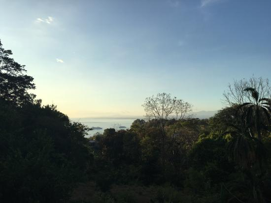 Backpackers Manuel Antonio: photo4.jpg