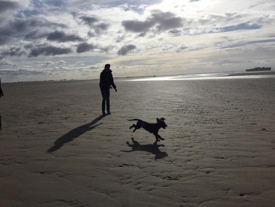 Formby, UK: Walk in the beach nearby