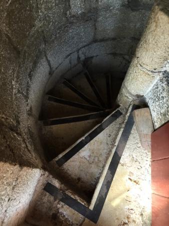 Torre de Belem Garden