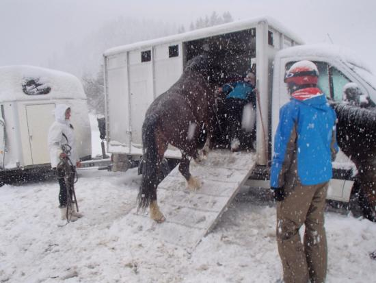 Ranch du Lac : Ponies fed and loaded up before skiers - just as it should be!