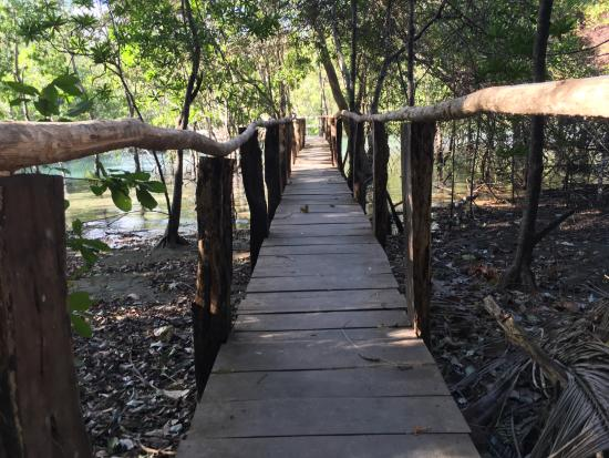 Nicoya, Costa Rica: Curu National Wildlife Refuge