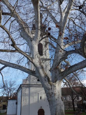 Нижняя церковь