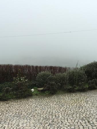 Quinta do Salvador do Mundo: photo1.jpg