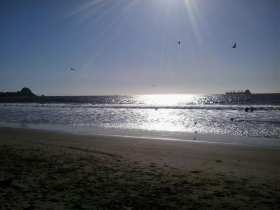 Coronel, Chile: Nada mas bello que esta postal de el mar de playa blanca ;) :)