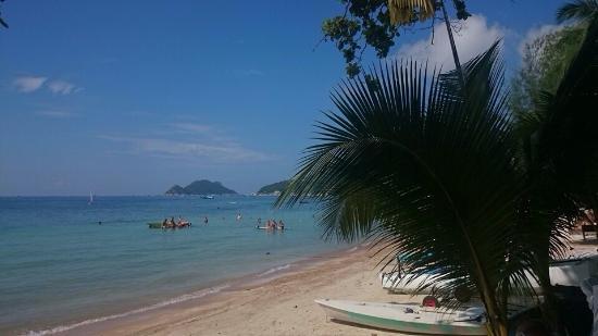 AC Resort: photo1.jpg