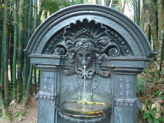 ipe de jardim botânico: of Botanical Garden (Jardim Botanico), Rio de Janeiro – TripAdvisor