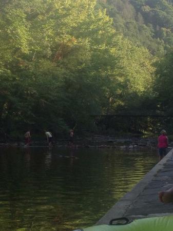 Blue Bend Recreation Area: photo1.jpg