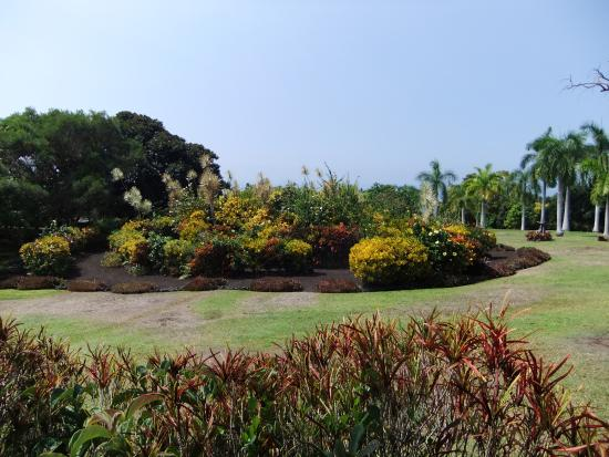 Paleaku Gardens Peace Sanctuary: The Galaxy Garden