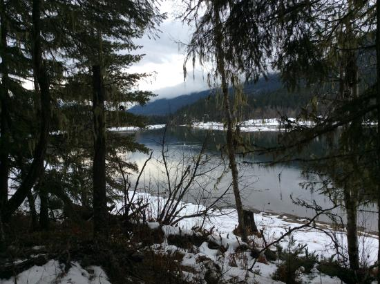 Slocan, Kanada: Nearby Cross Country Ski Trail with Trumpeter Swans