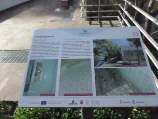 Bagni Termali Is Bangius: Descrizione e storia dei Bagni termali