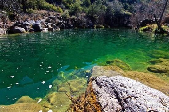 Emerald Green Water Picture Of Fossil Creek Wilderness