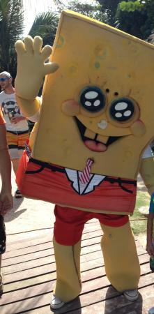 Spongebob! Great photo ops for kids.