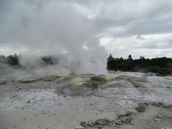 Terry Tours : Photu Geyser