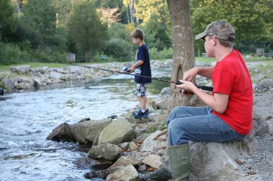 Fishing at hatchery creek for trout picture of lake for Fish hatchery ky