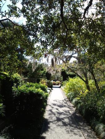 Brookgreen Gardens: Scenery