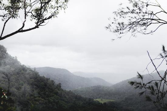 Coolum Beach Getaway Resort: On a hike through Condalilla National Park, not far away.