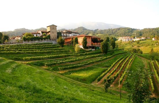 Ristorante deIl'Agriturismo Belvedere