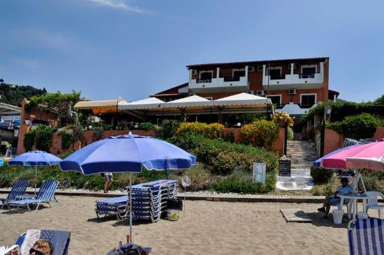 Dandidis Seaside Pension: Strand