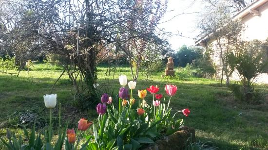 Nerigean, Francia: jardin 1