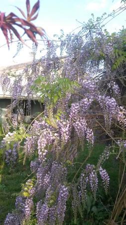 Nerigean, Prancis: jardin 3