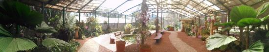 La Garita, Costa Rica: One of the nursery exhibitions.
