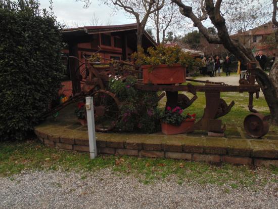 Parte del giardino della Masseria