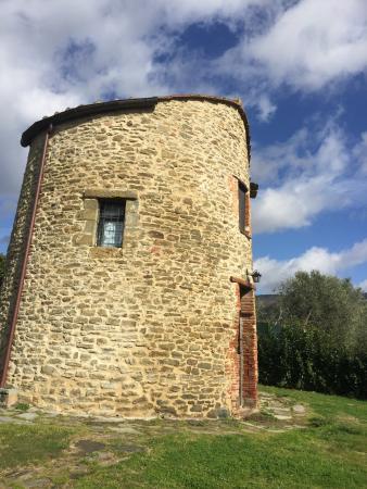 Borgo Sanguineto: Borgo Sanguineto