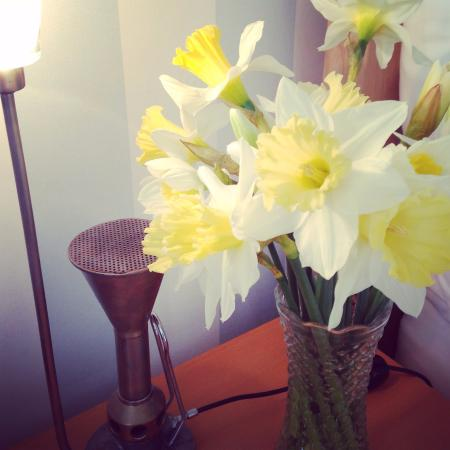 Stockwell Lodge Guest House: Daffodils were a nice touch, alongside the quirky bedside light.