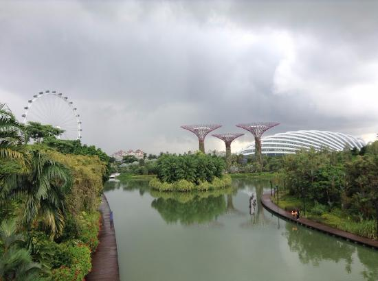 Green Garden Picture Of Gardens By The Bay Singapore