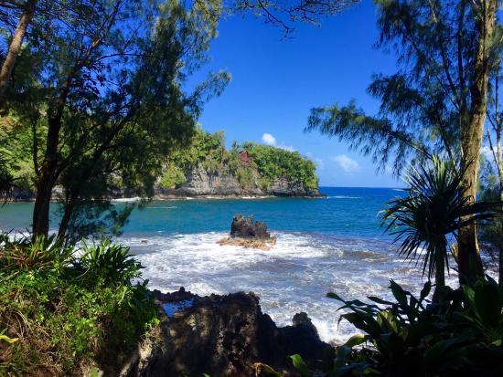 Picture Of Hawaii Tropical Botanical Garden Papaikou Tripadvisor