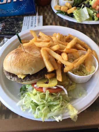 Buttonwood Canal : Beef burger with hot chips - really yummy