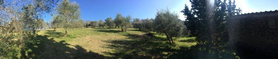 Castello di Bibbione: photo6.jpg