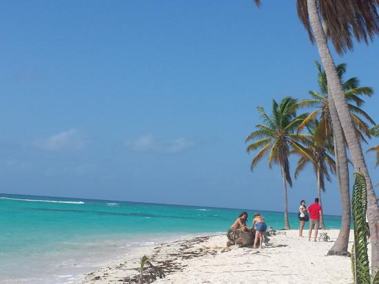 Bayahibe, Dominik Cumhuriyeti: ile de Saona ( le Paradis sur terre)